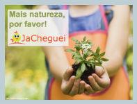 Materiais Educativos para Escolas: Mais natureza para as crianças: Brincadeiras ao ar livre